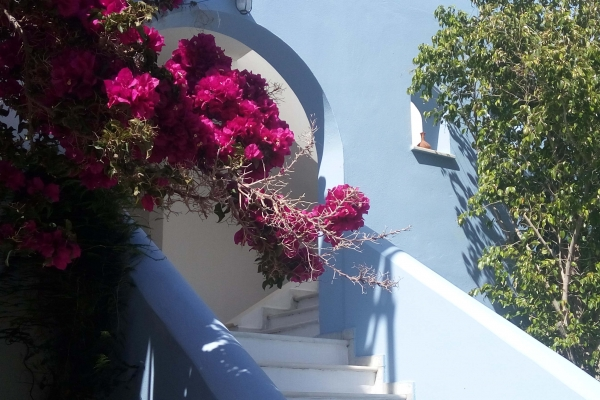 blue-and-white-naxos-agia-anna-main-103E5253A3-E911-5525-C8BD-233DA1130861.jpg